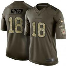 Cincinnati Bengals #18 A.J. Green Green Salute To Service Jersey